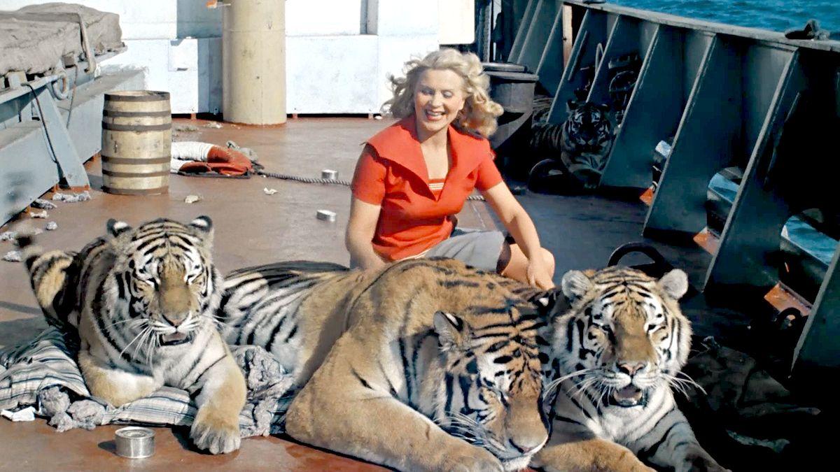 Bbc тигр шпион джунглей 2008 смотреть онлайн в